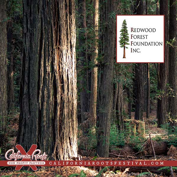 Cali Roots 2019 Redwood Forest Foundation Partnership