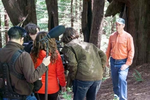 RFFI In DiCaprio Climate Change Documentary | Redwood Forest