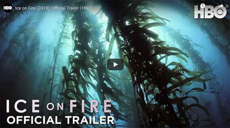 Ice On Fire- Official Trailer