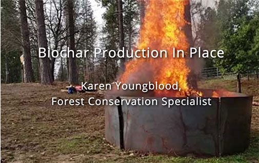Biochar Production In Place In Usal Redwood Forest: 2020